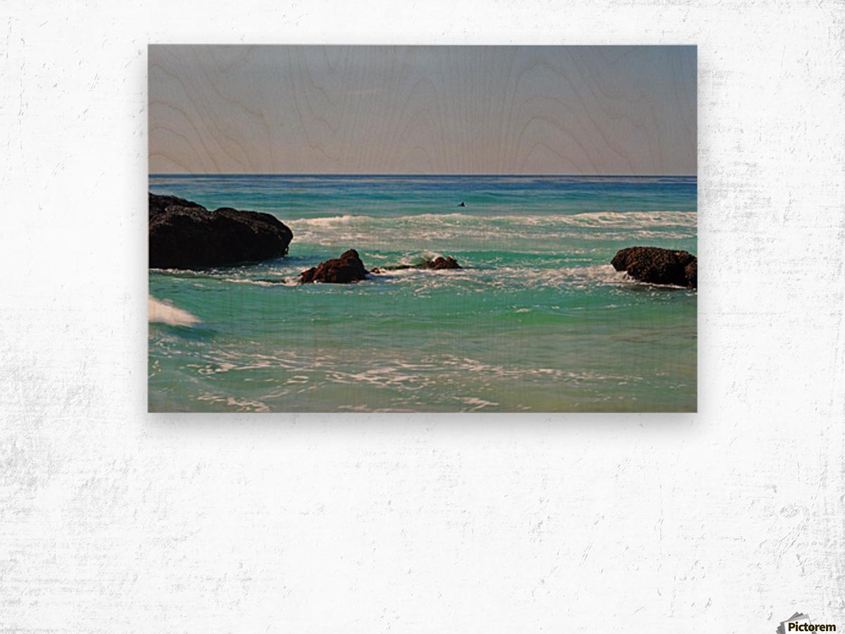 Ocean by Dana Point CA Wood print