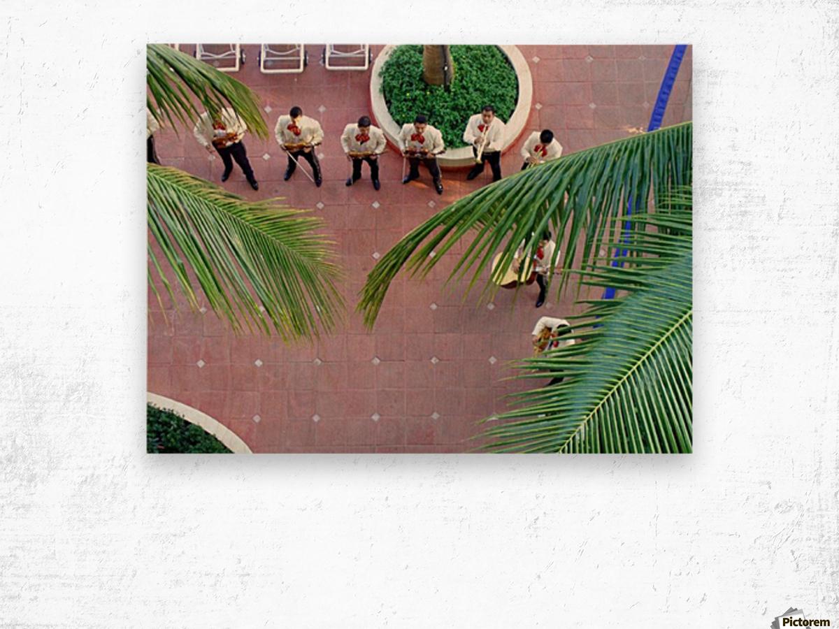 Mexican Serenade Wood print