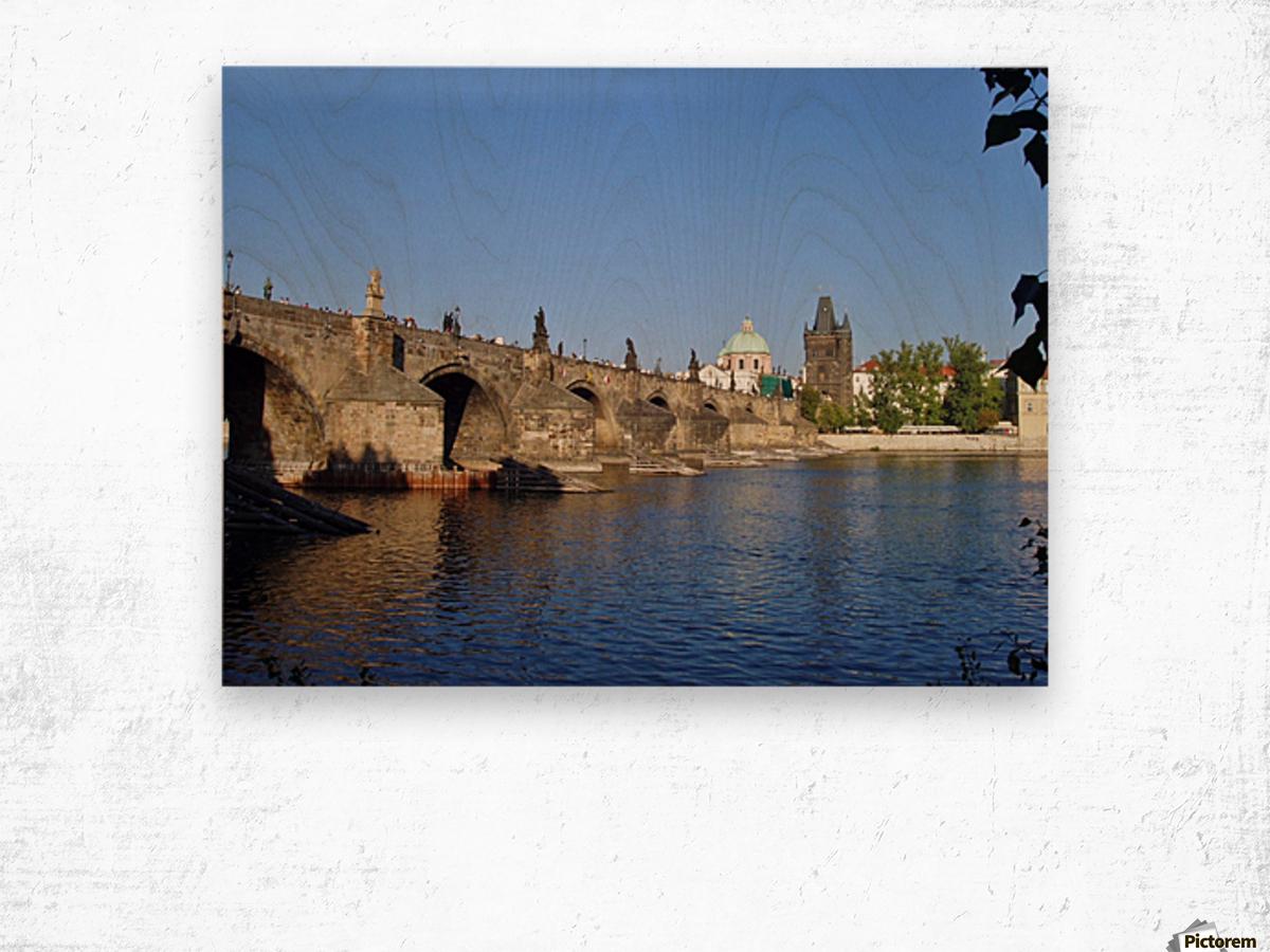 View of The Charles Bridge Prague Wood print