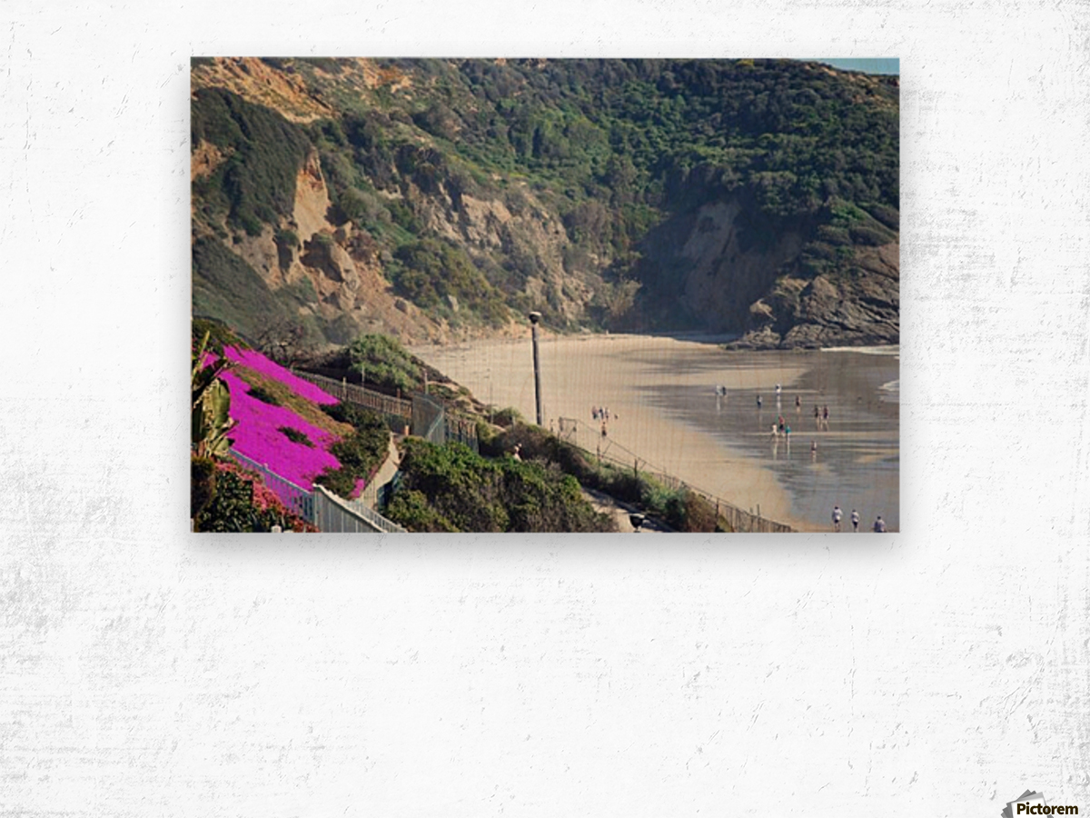 Secluded Cali fornia Beach Wood print