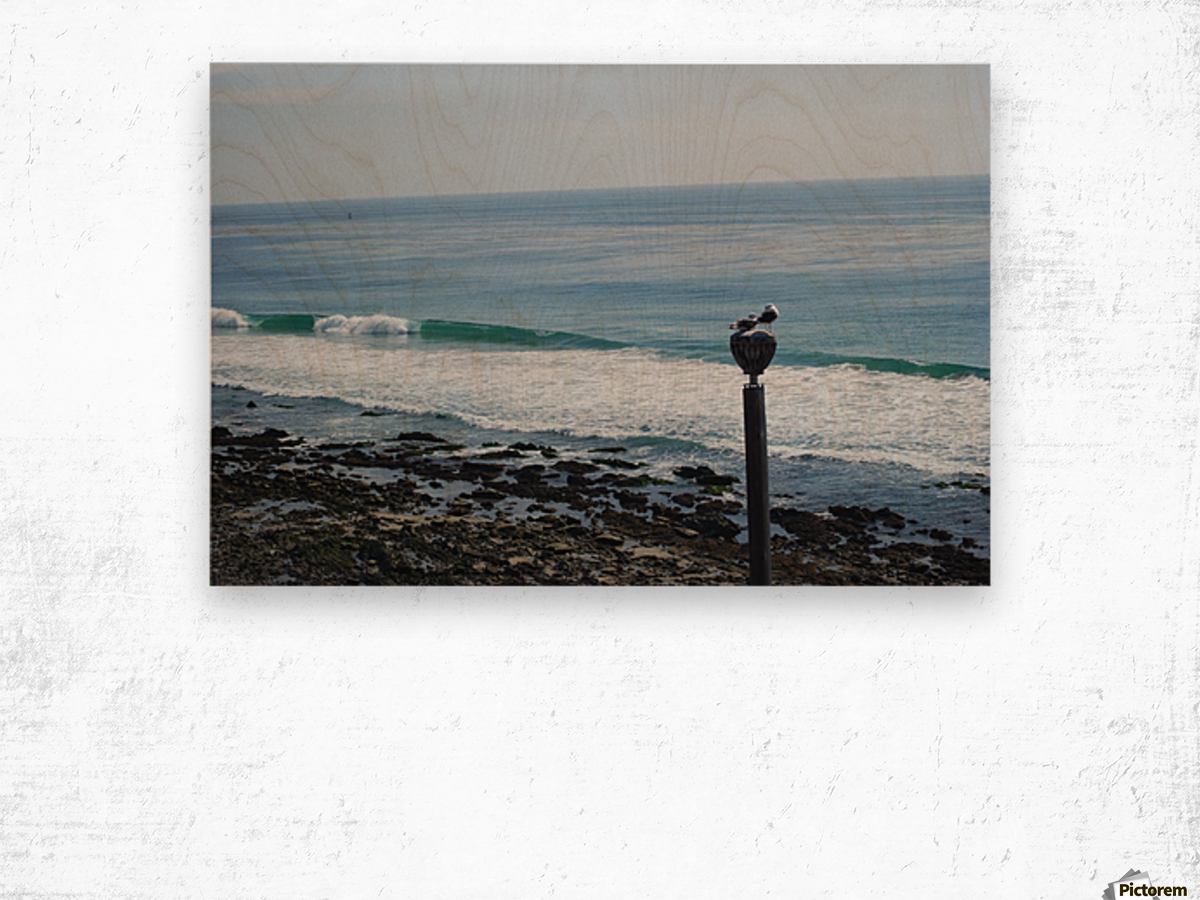 Dana Point Deserted Beach Scene Wood print