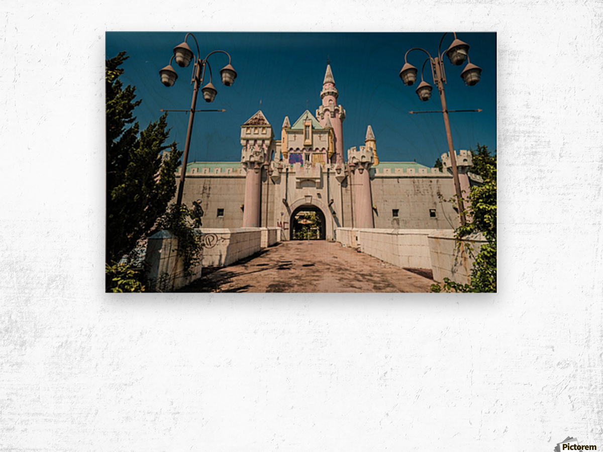 Nara Dreamland Wood print
