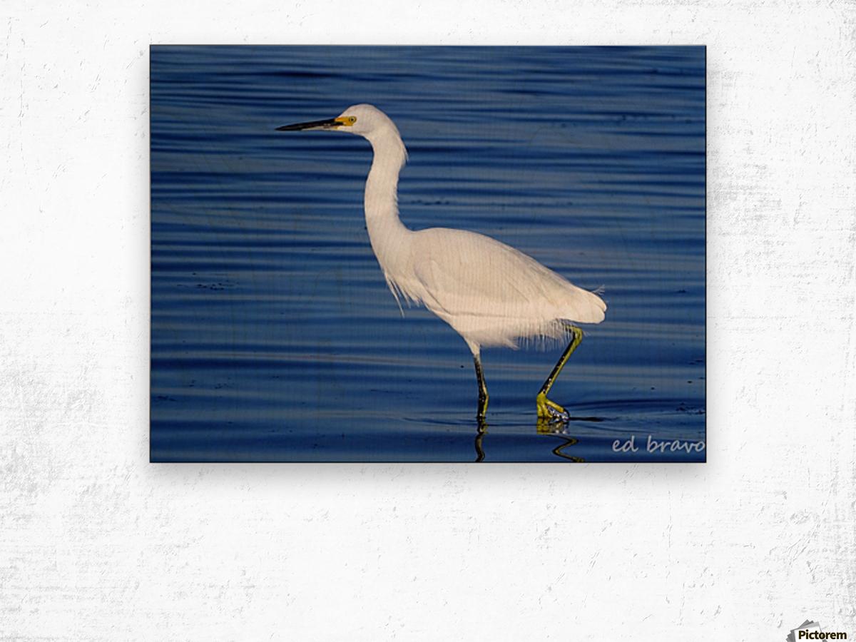 Heron White Walking Wood print