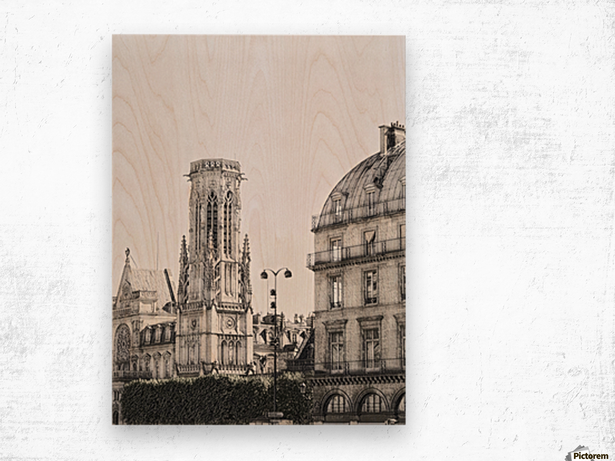 Notre Dame & Shade Wood print