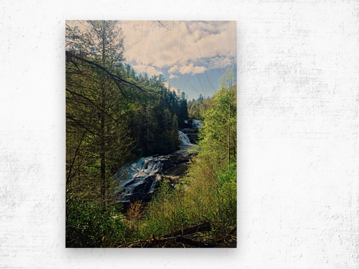 Waterfall Delight Wood print
