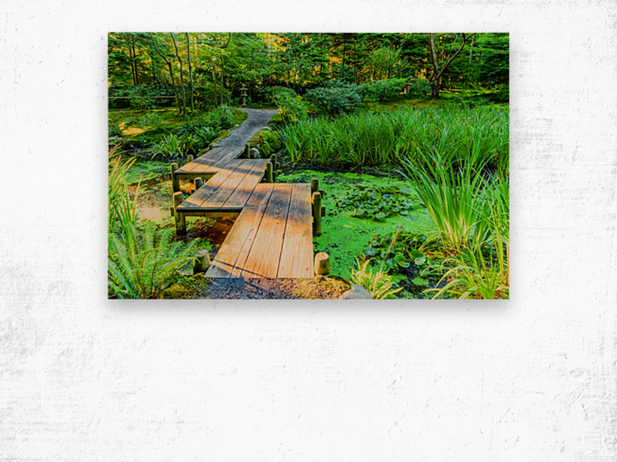 wooden bridge across a pond with duckweed and leaves of water lilies Wood print