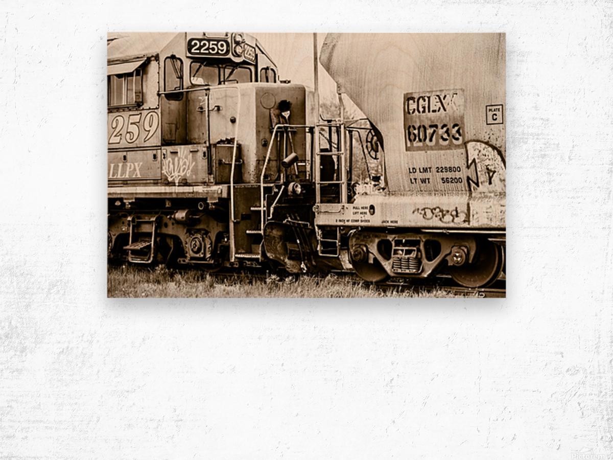 On the Tracks Wood print