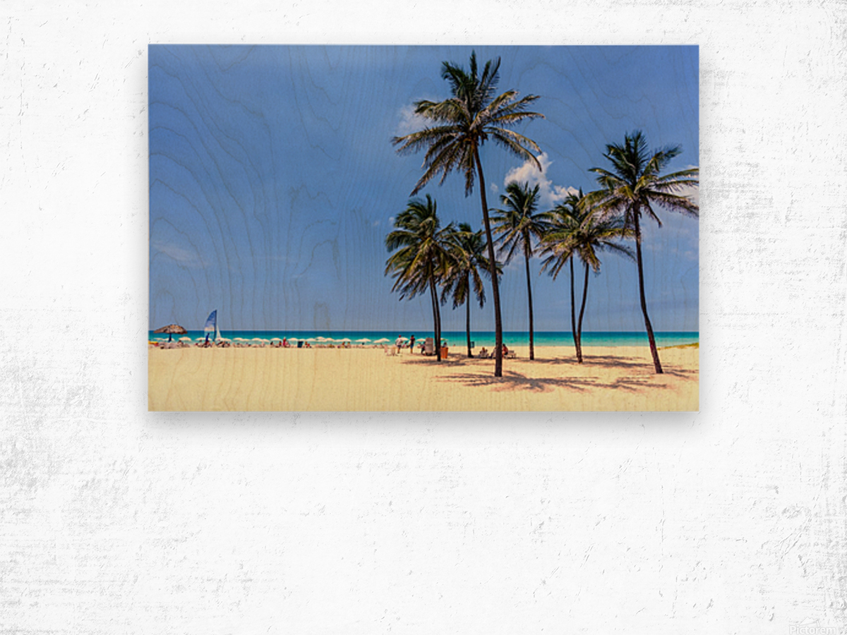 vacation on the beach on the hot Caribbean islands with green palms, yellow sand, blue sky Wood print