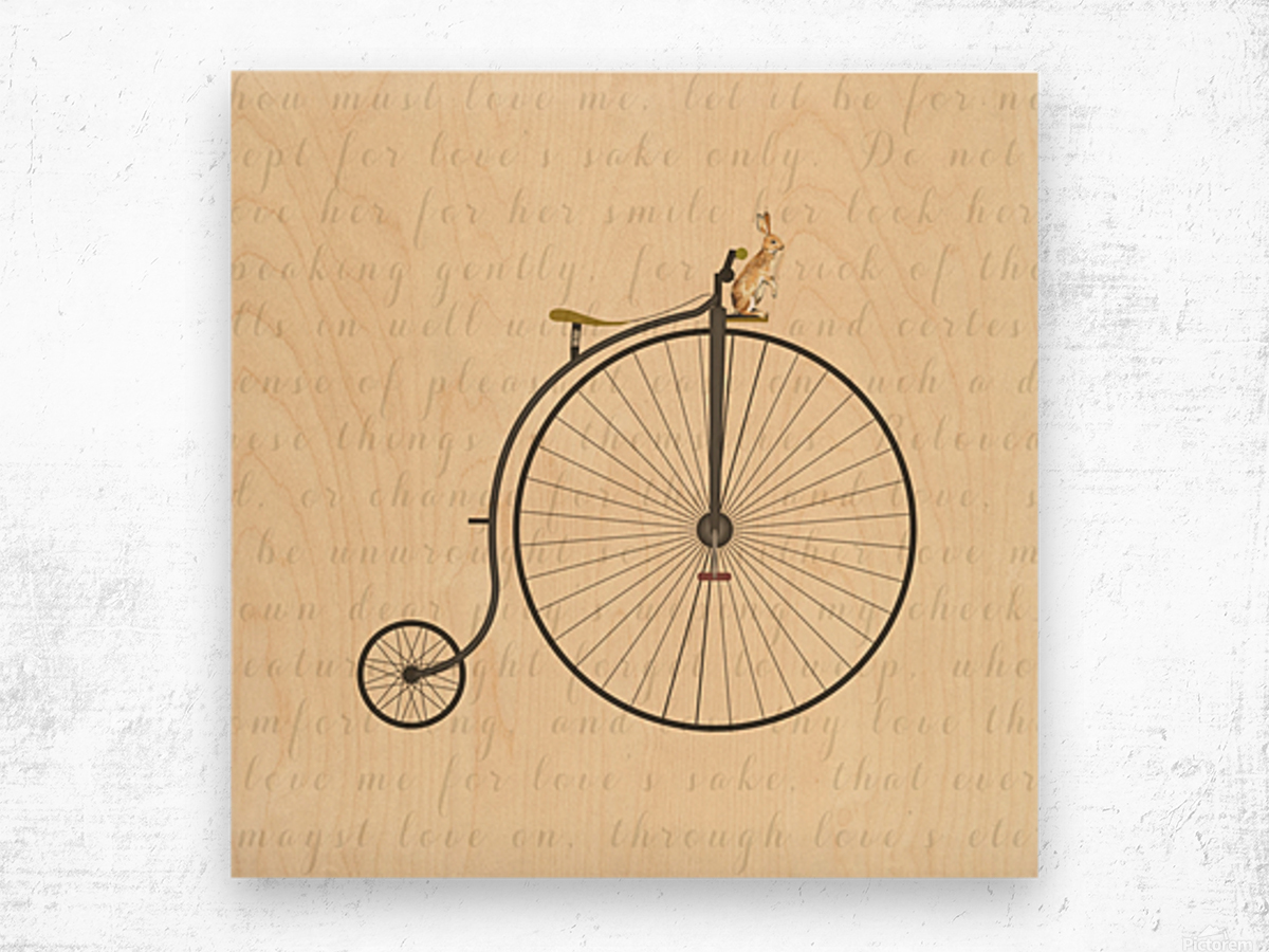 Vintage Penny Farthing Bunny Wood print