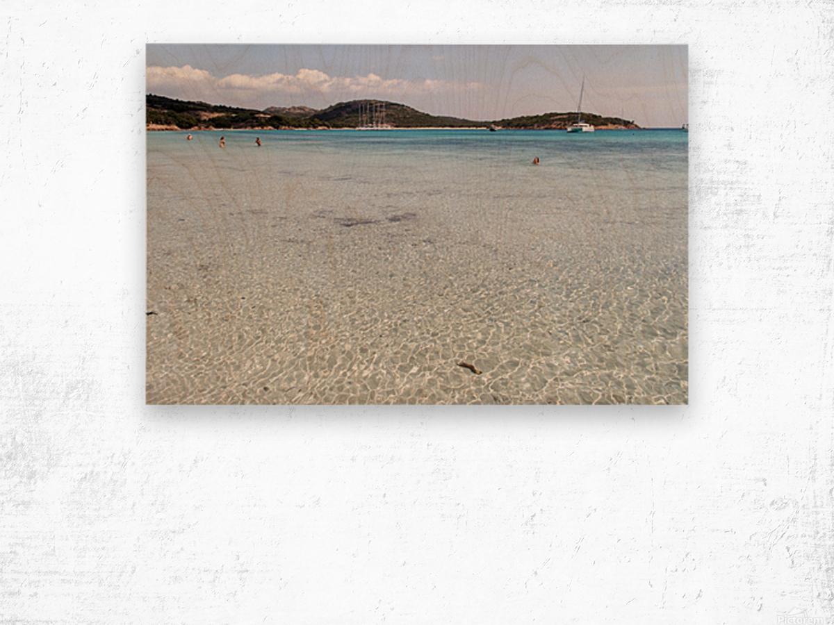 Rondinara beach Wood print
