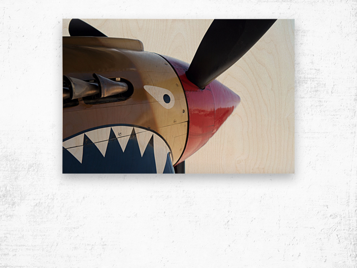 P-40 Warhawk Nose Wood print