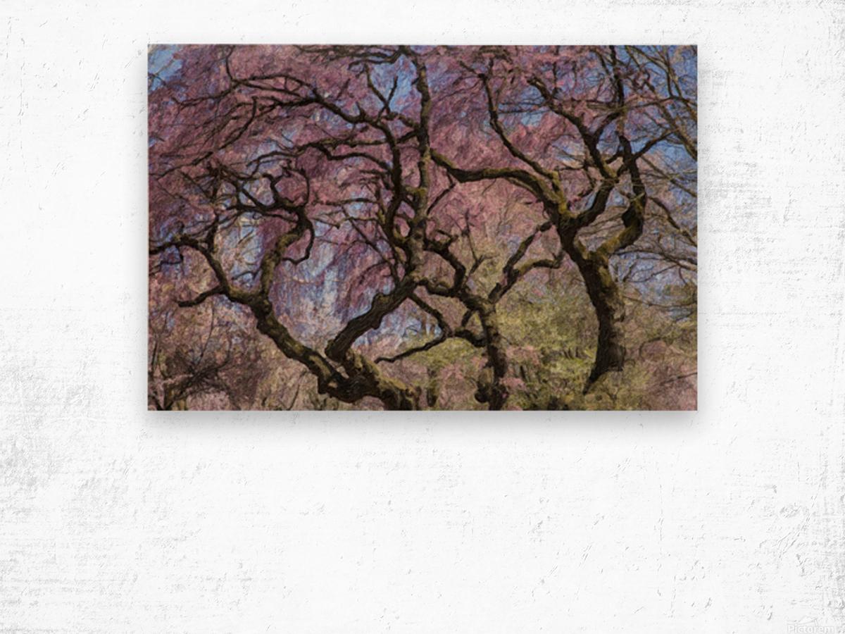 Abstract Cherry Blossom tree Wood print