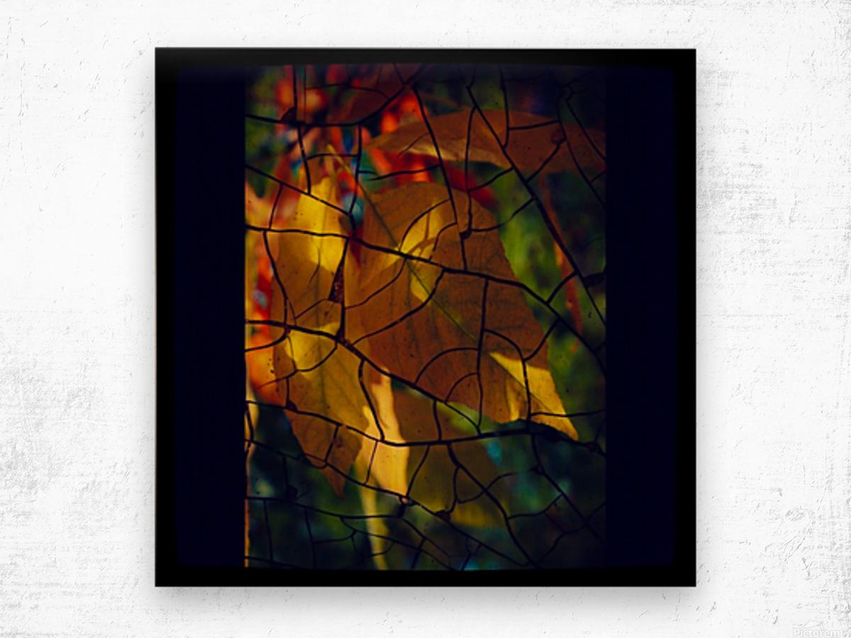 Broken Leaves Wood print