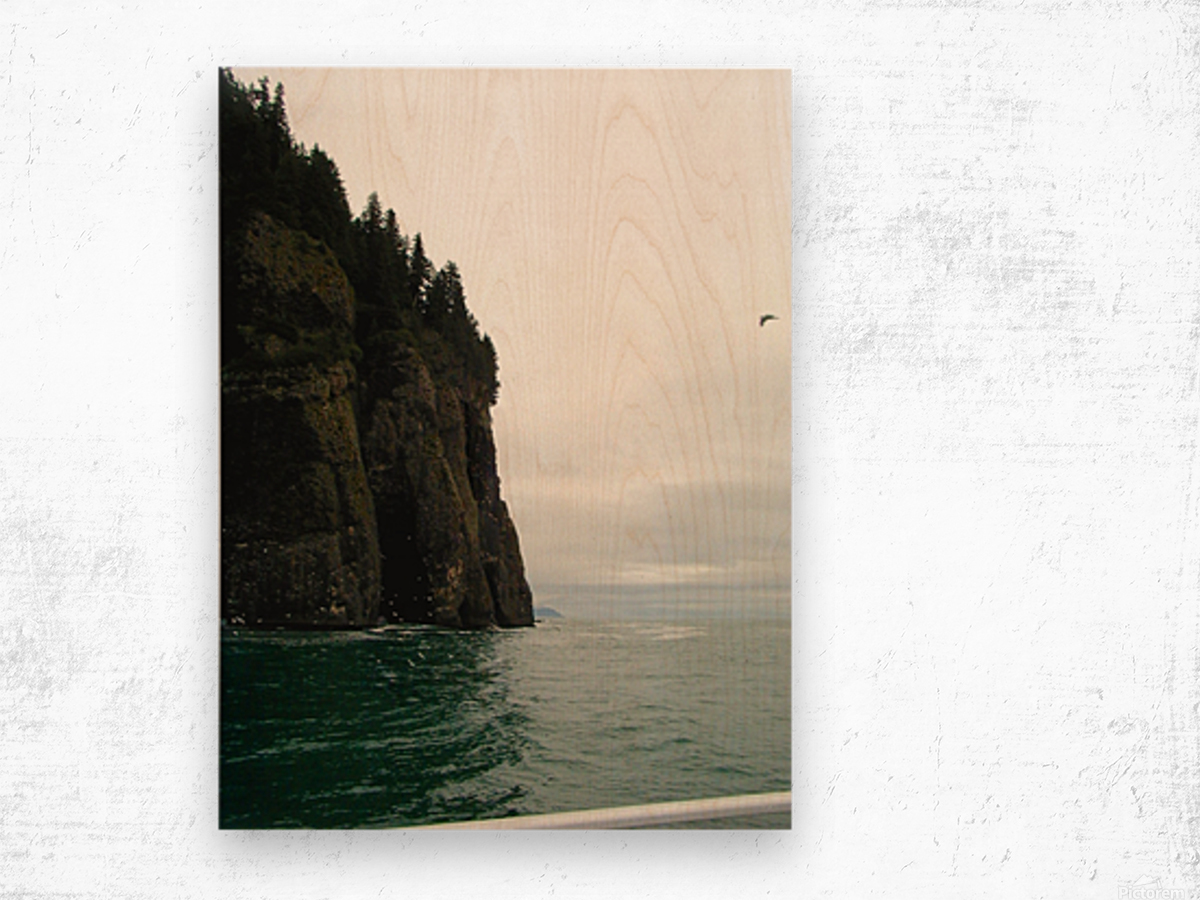 Point with bird Wood print
