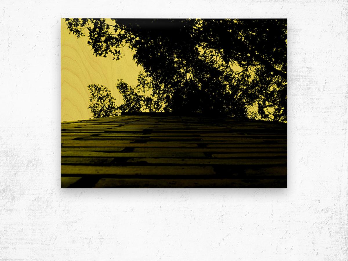 C (15) Impression sur bois