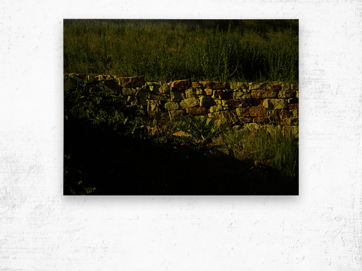 sofn-AD479C1C Wood print