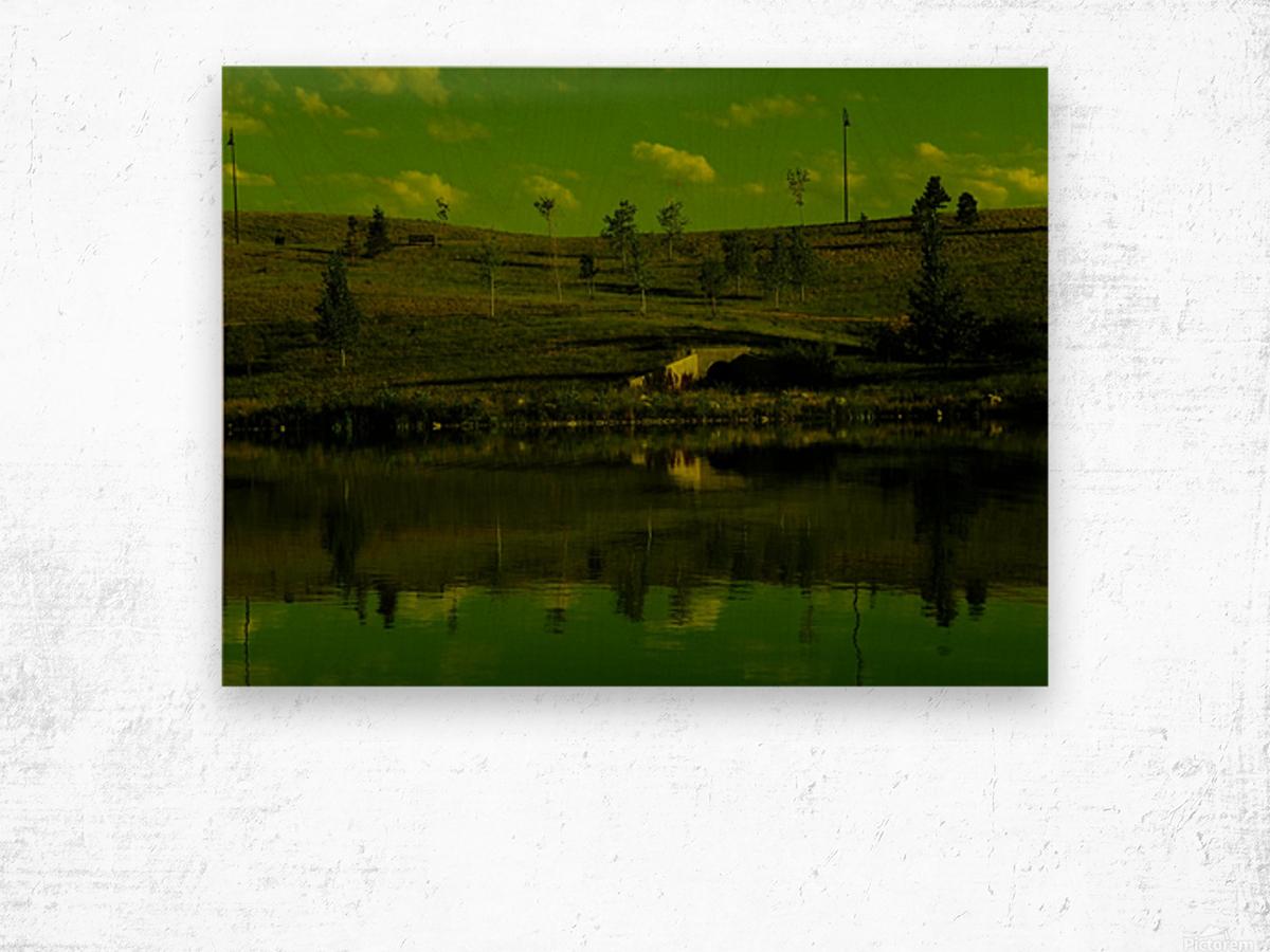 sofn-E0070B84 Wood print