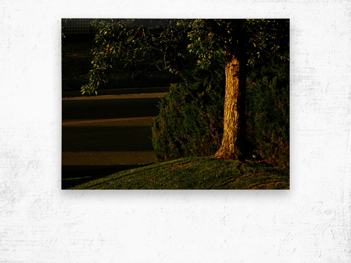 H (15) Wood print
