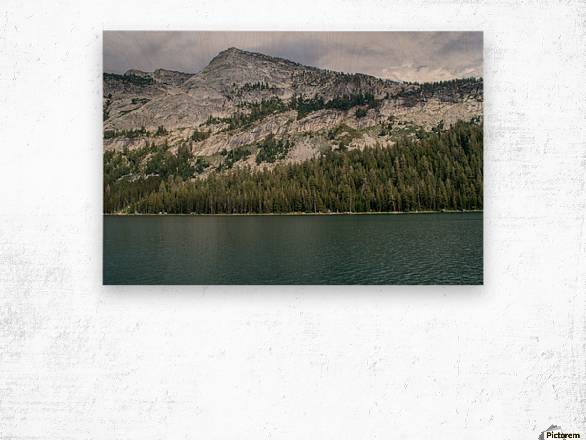 tenaya mountain Wood print