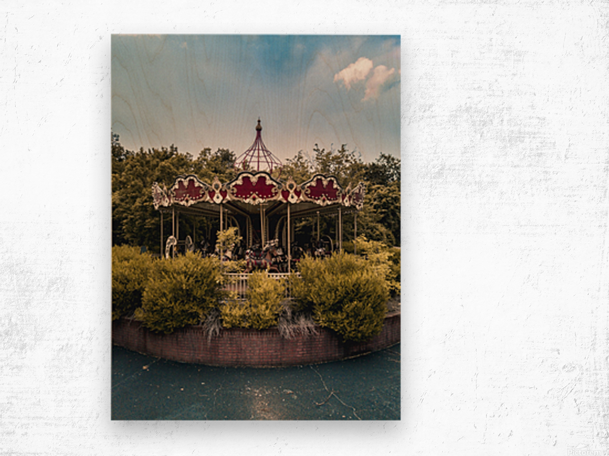 Abandoned Theme Park Merry Go Round Wood print