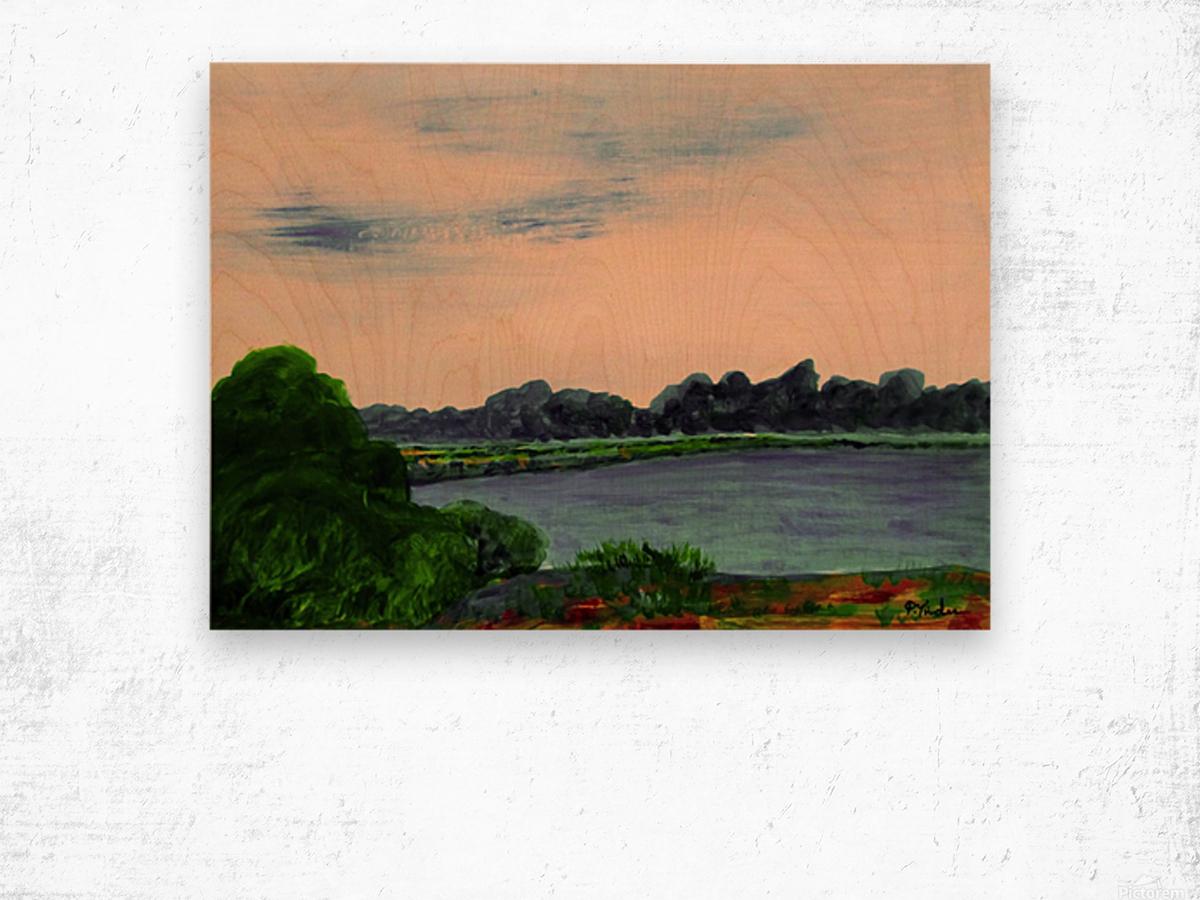 Evening Landscape Wood print