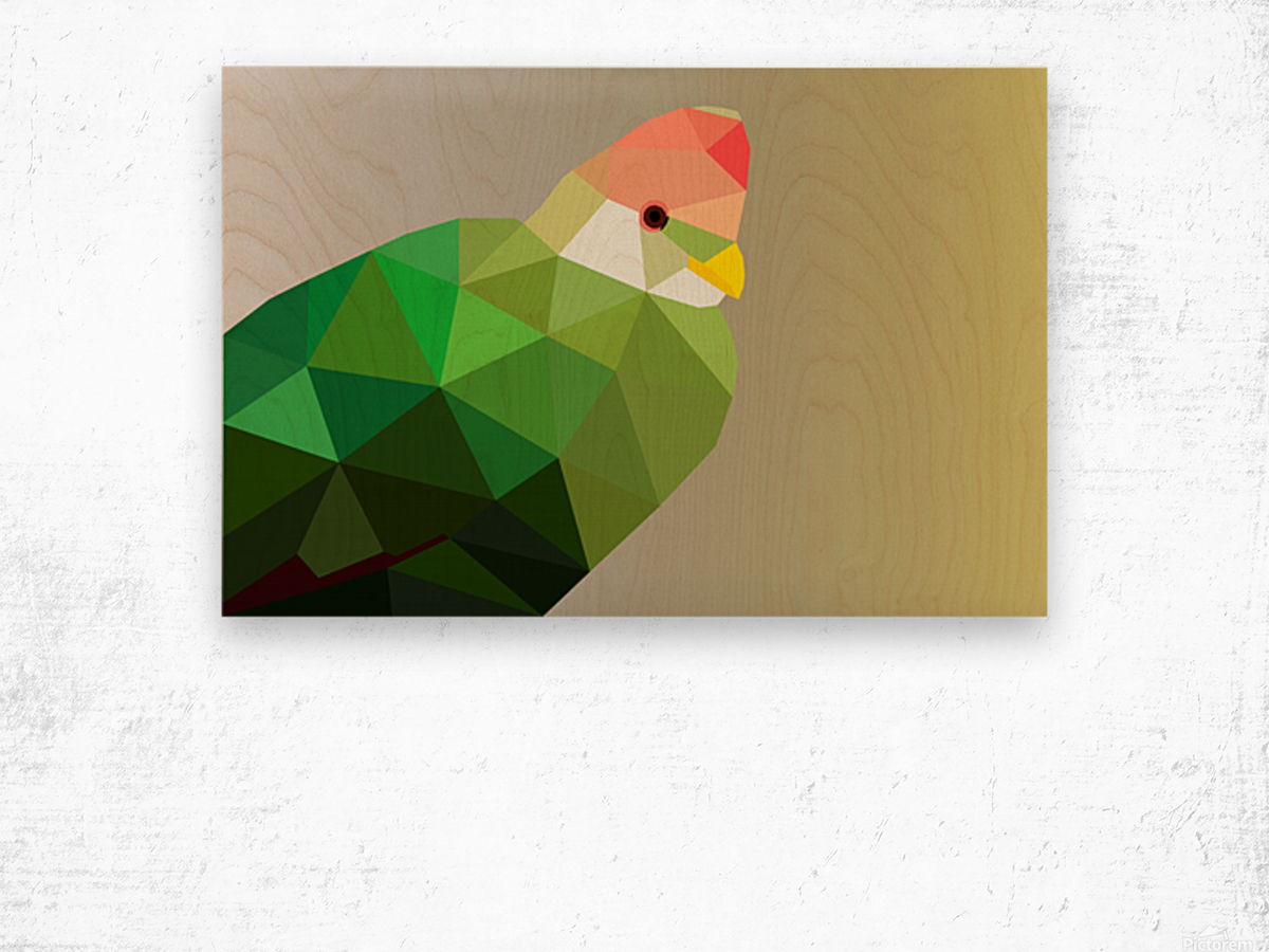 RED CRESTED TURACO LOW POLY ART Wood print