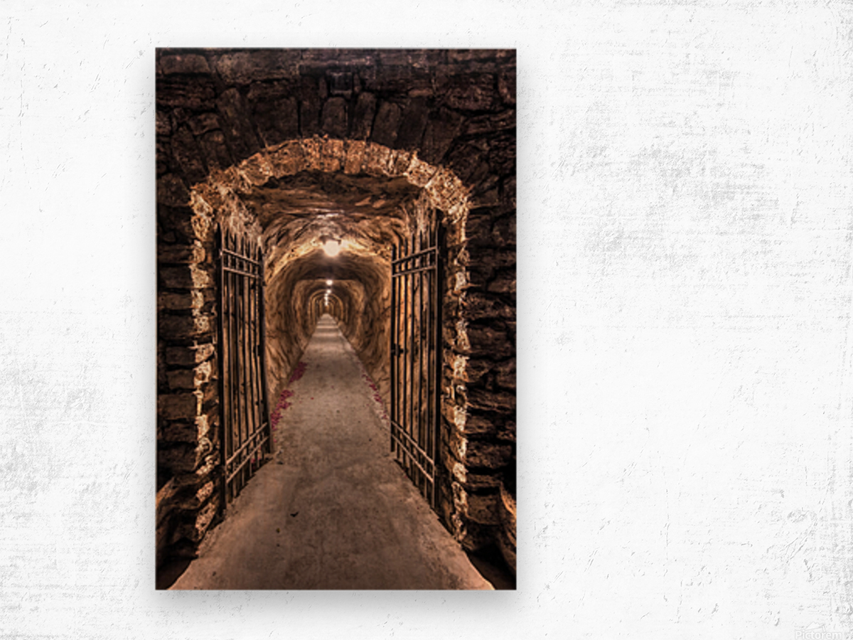 old tunnel Wood print