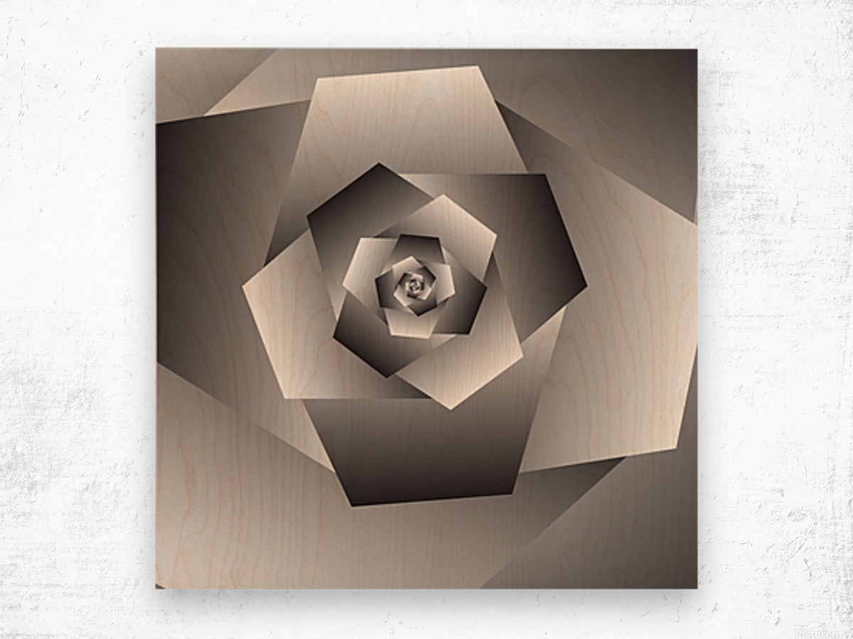 Monochrome Rose Art Wood print