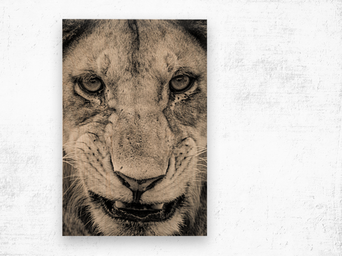 Grrrr Wood print