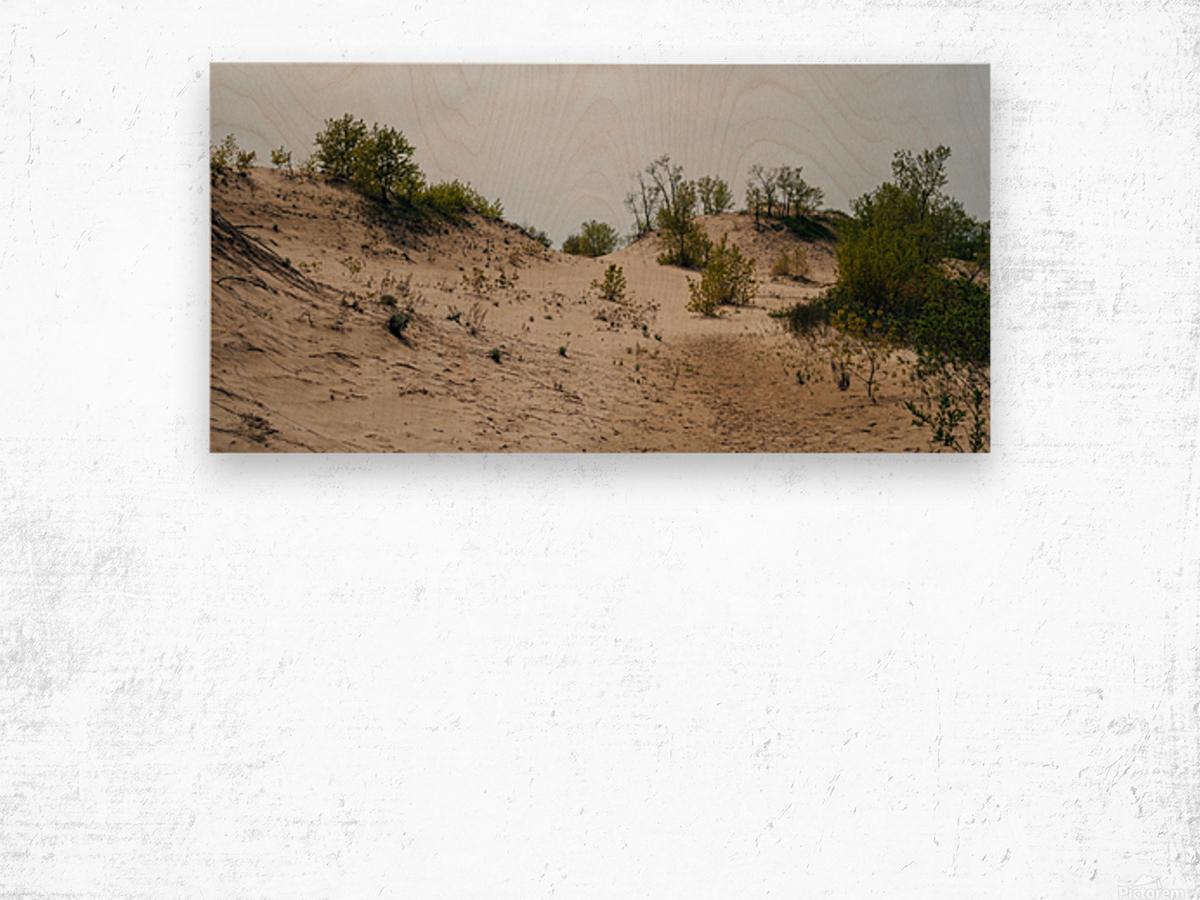 Sandbanks 2 Impression sur bois