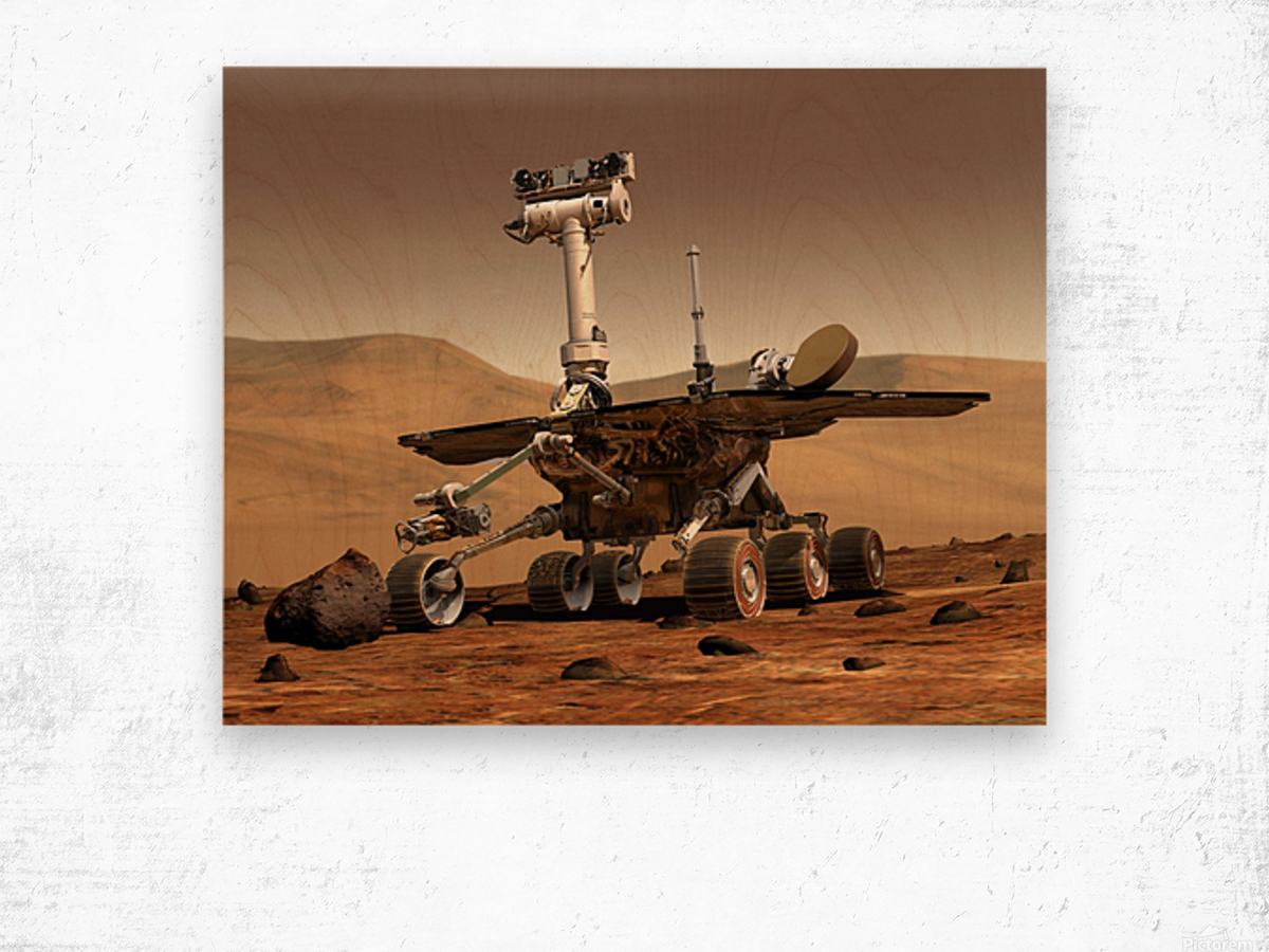 Artists Rendition of Mars Rover. Wood print