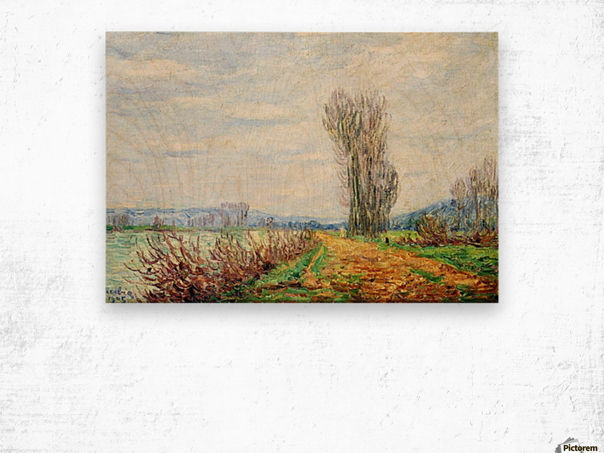 Morning Effect, Bank of the Yonne Wood print
