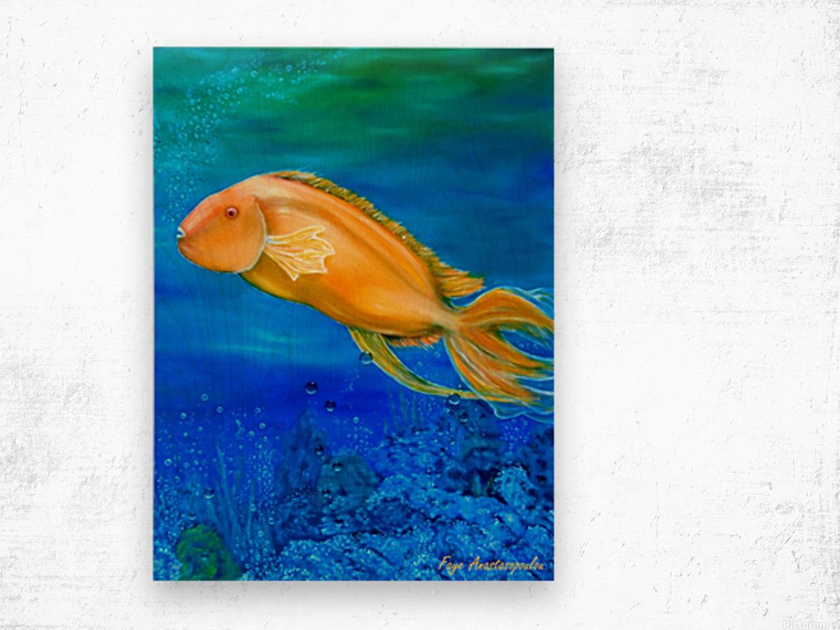 Undersea Journey Wood print
