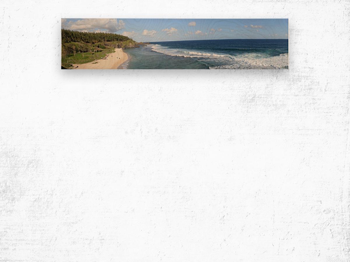 DSC_0930 Wood print