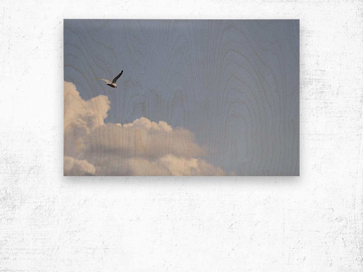 IMG_0245 Wood print