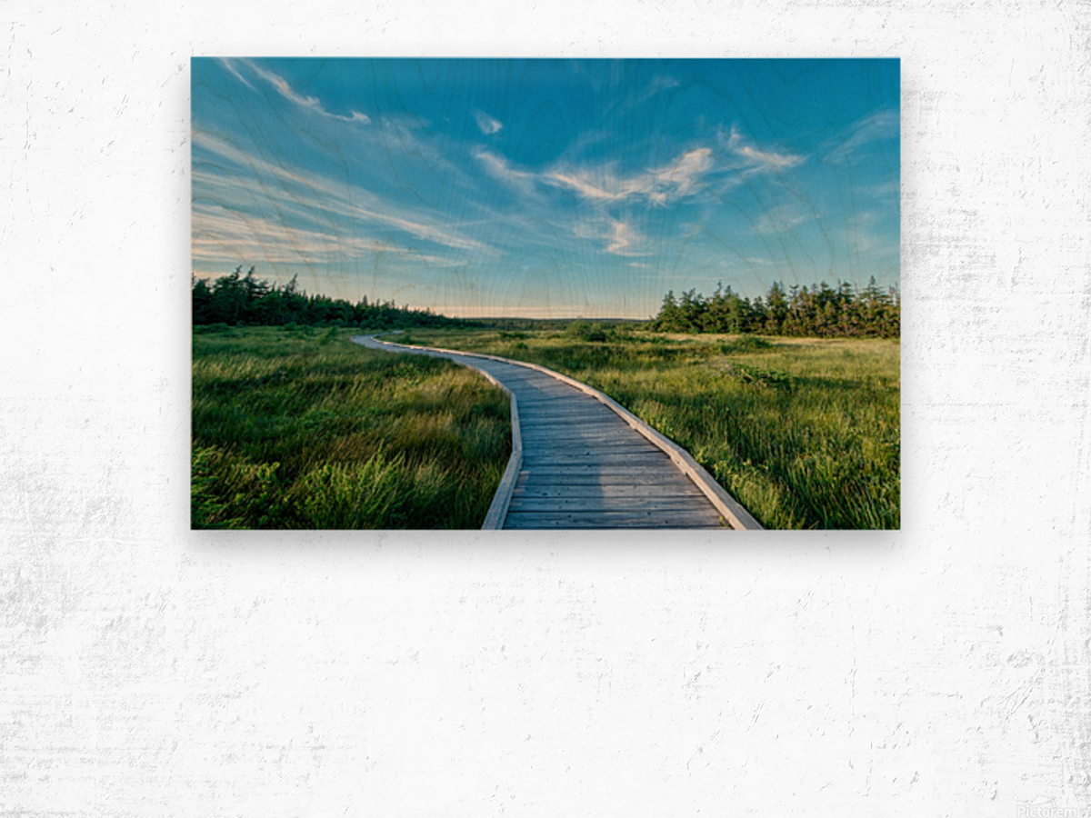 A walk at the Bog Wood print