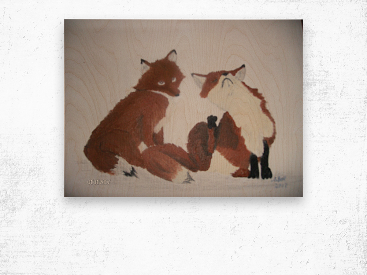 Red Fox pair Wood print