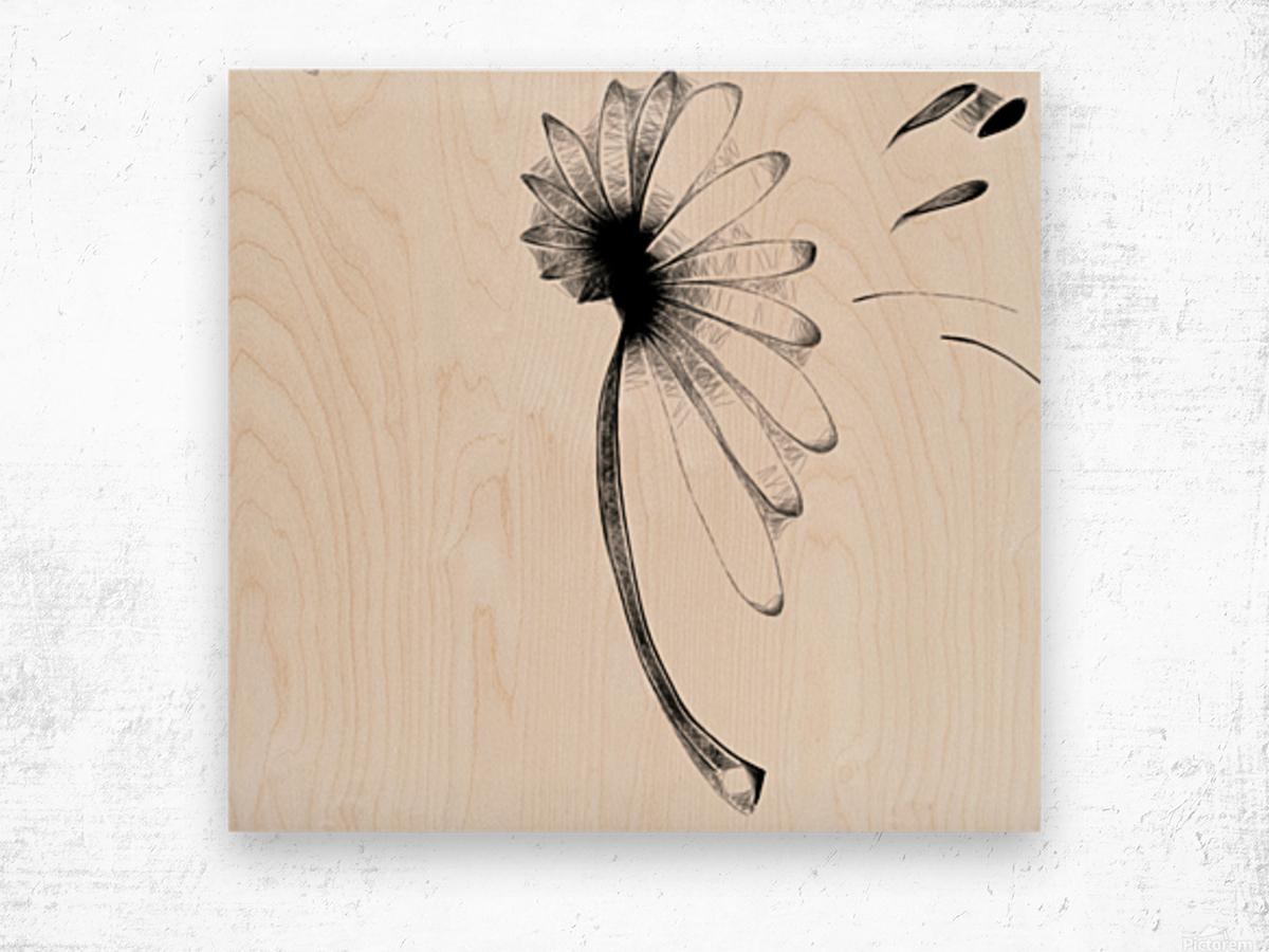 Carried Away Wood print