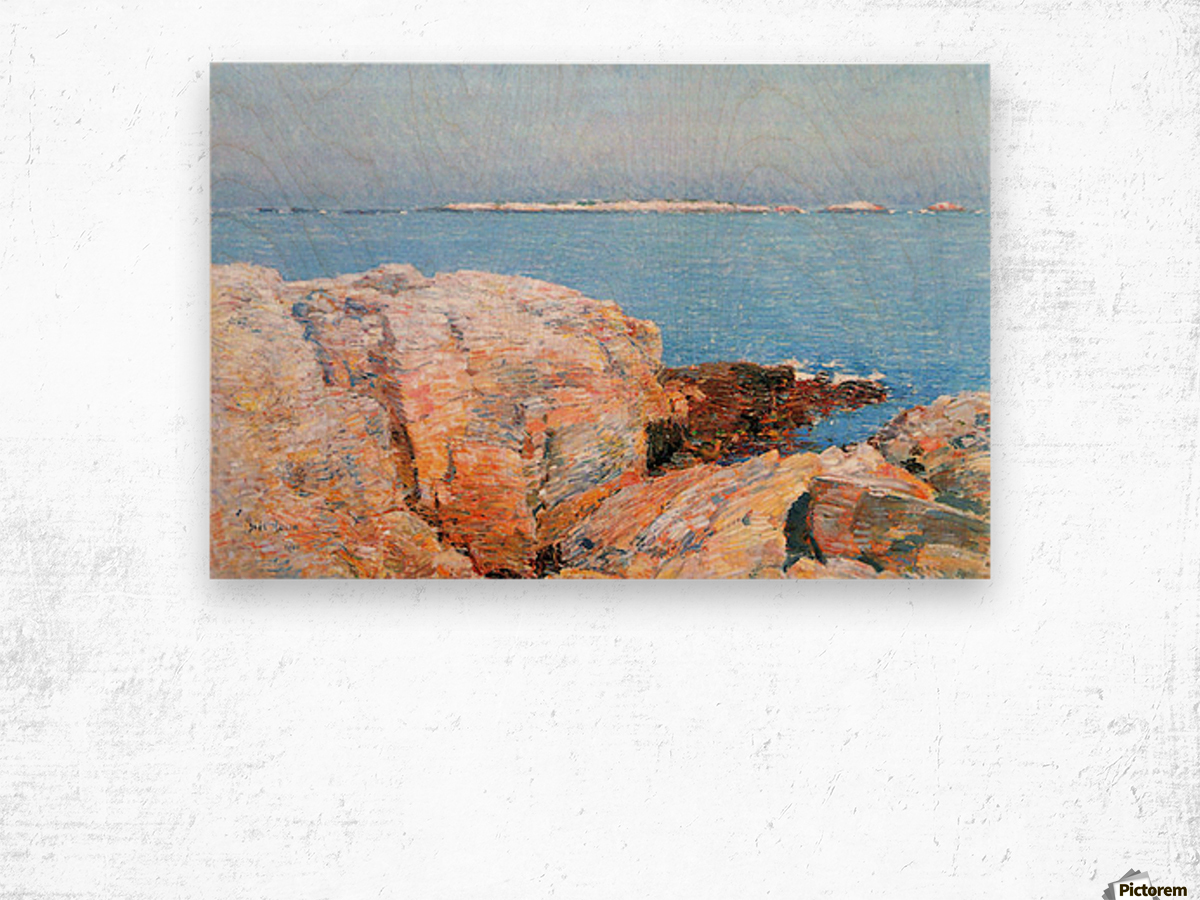 Duck island by Hassam Wood print