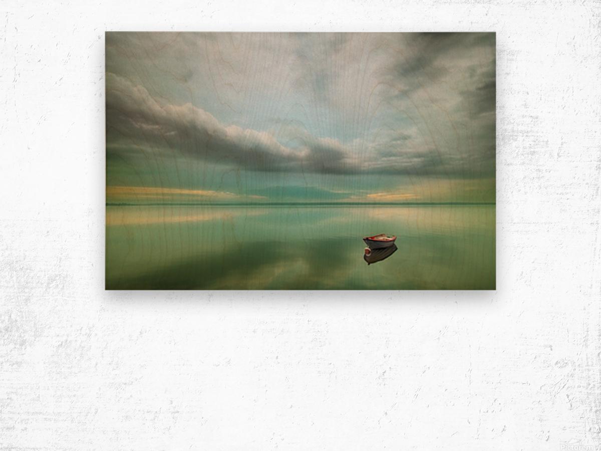 Boat... Wood print