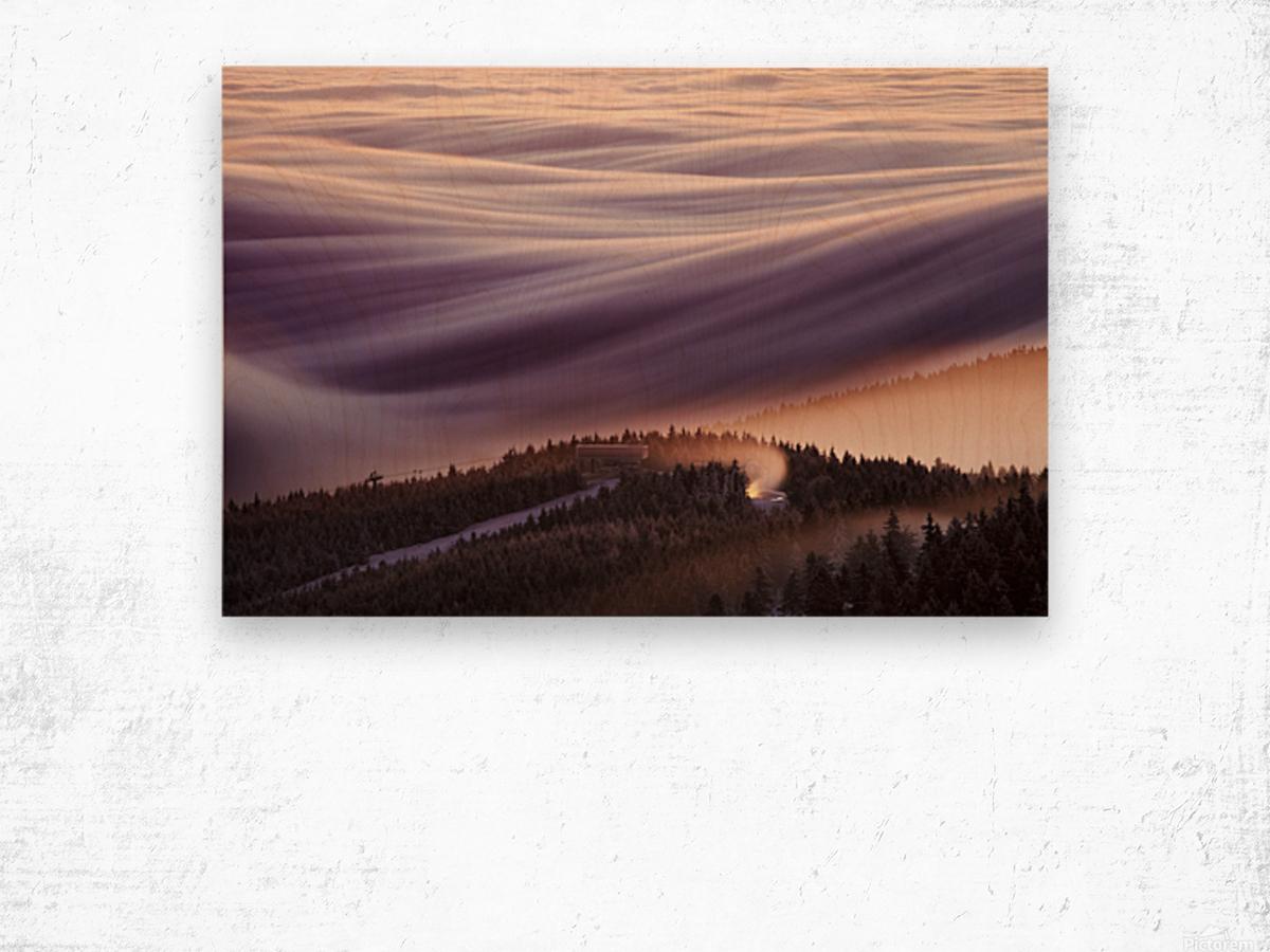 Whipped Cream Wood print