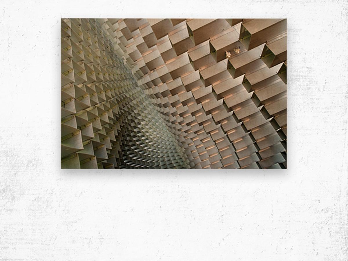 Serpentine Wood print