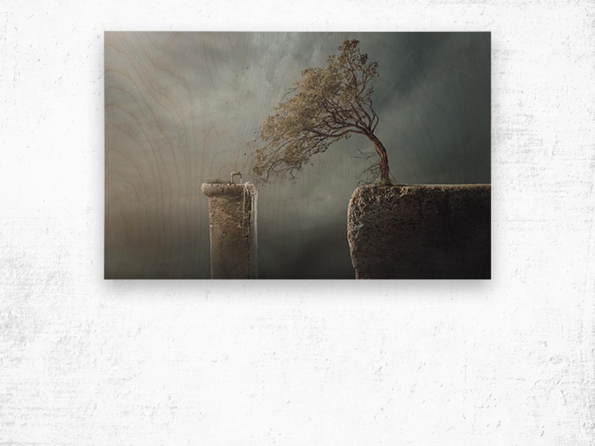 Drink Water Wood print