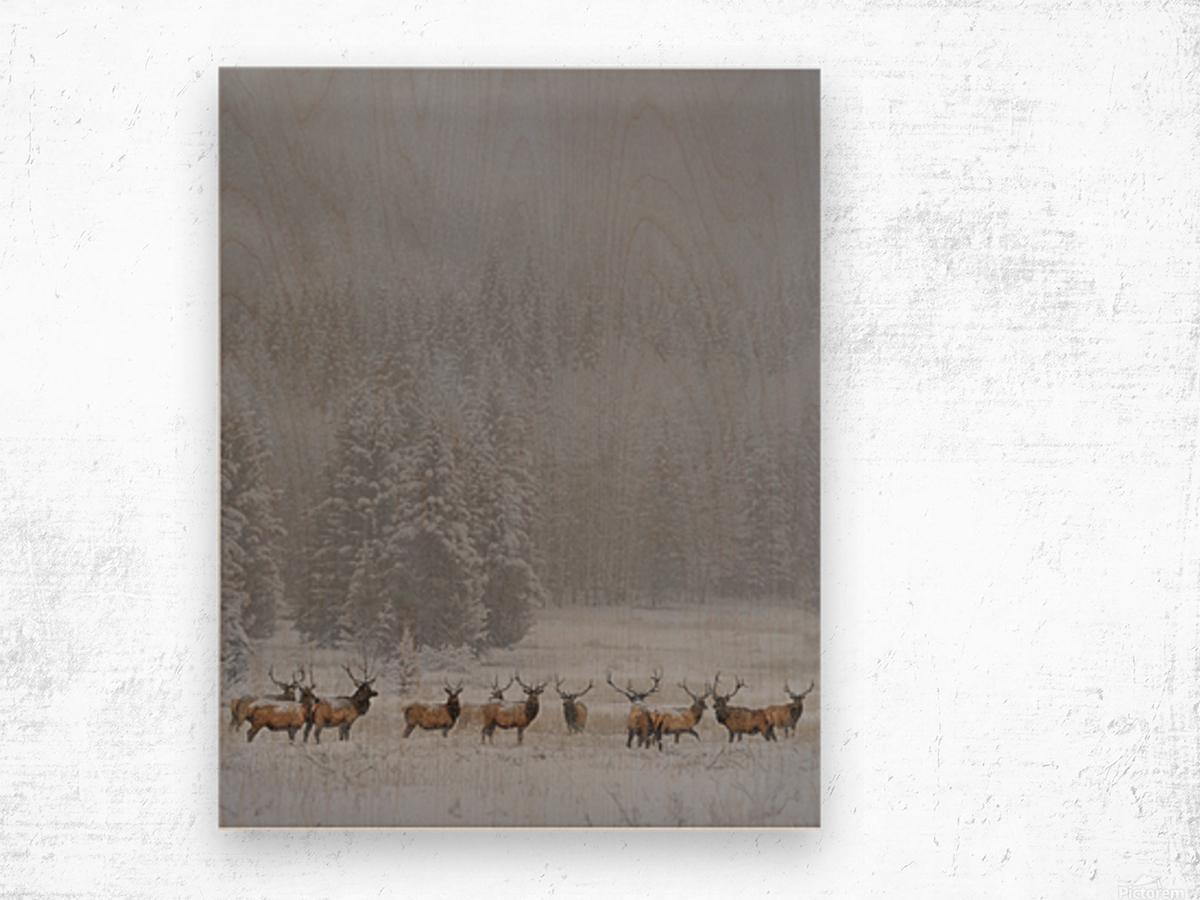 Standing in storm Wood print