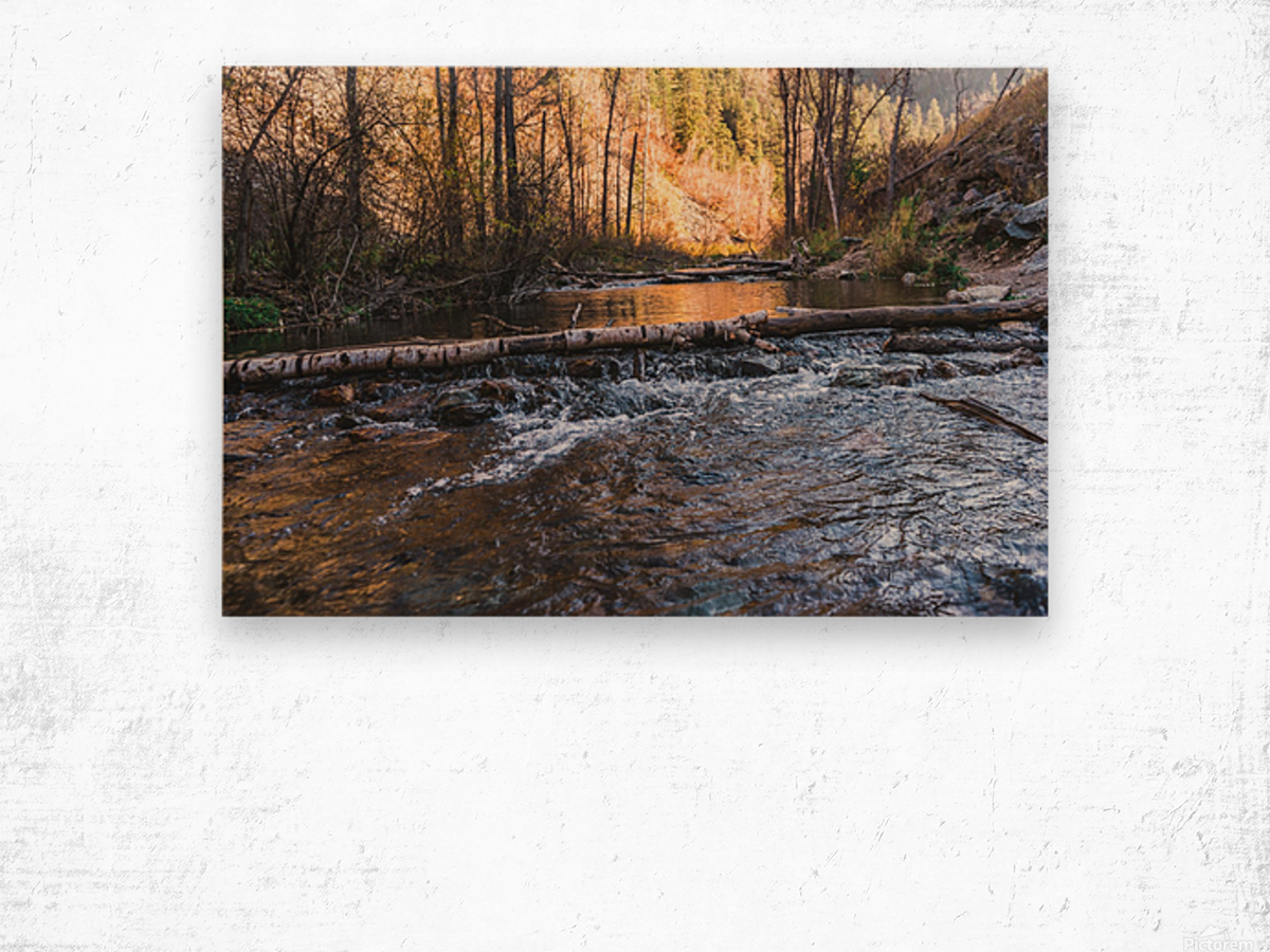 Log Block Creek Wood print