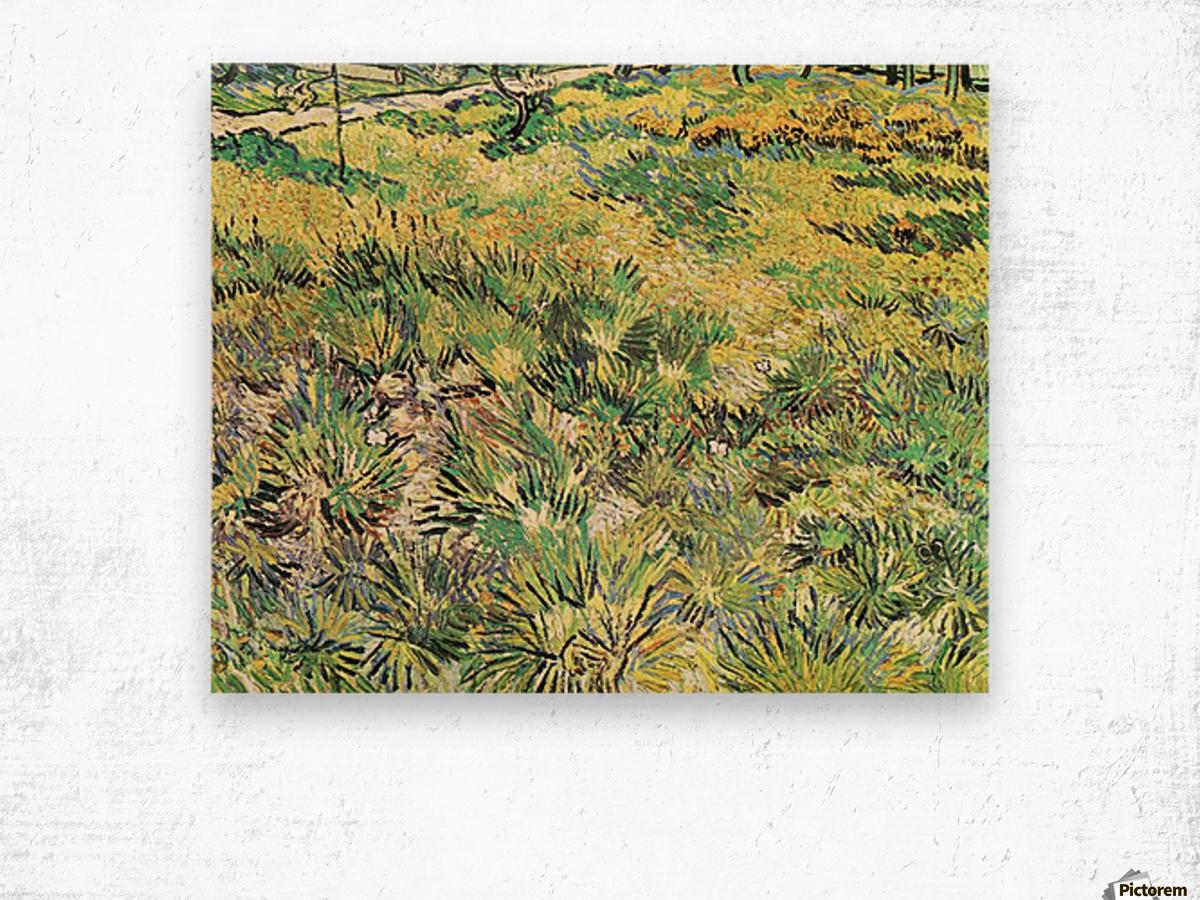 Meadow in the Garden of Saint-Paul Hospital by Van Gogh Wood print