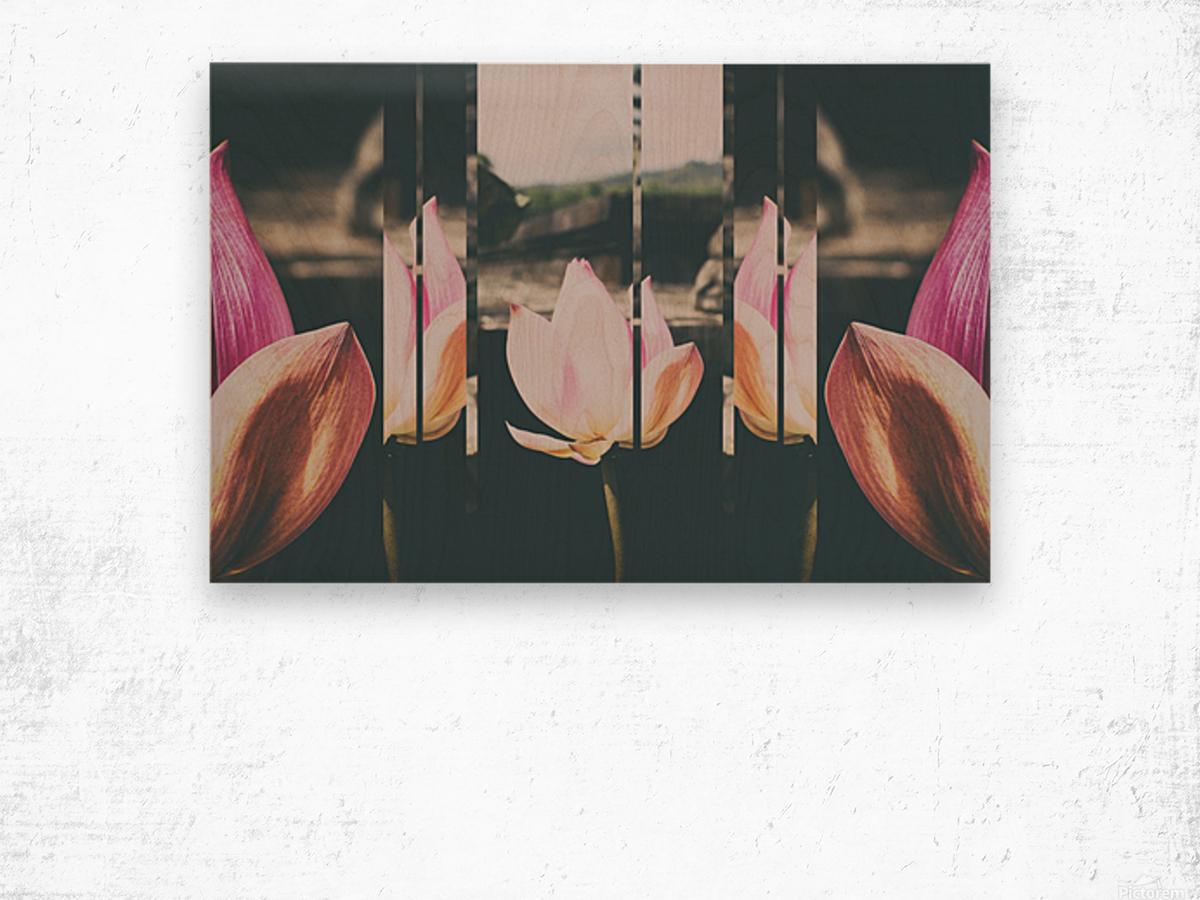 Pink Lotus Collage Wood print