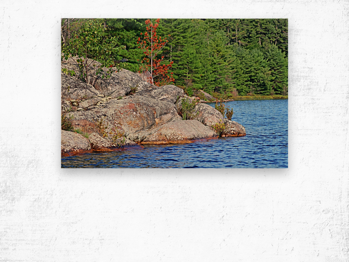Shawanaga Rock Formation Wood print