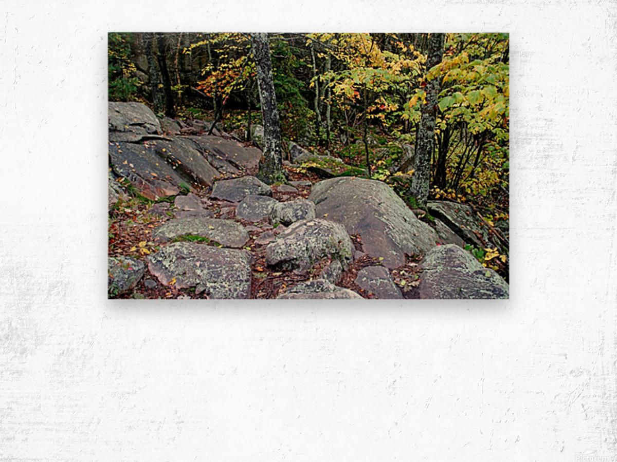 Chikanishing Trail Wood print