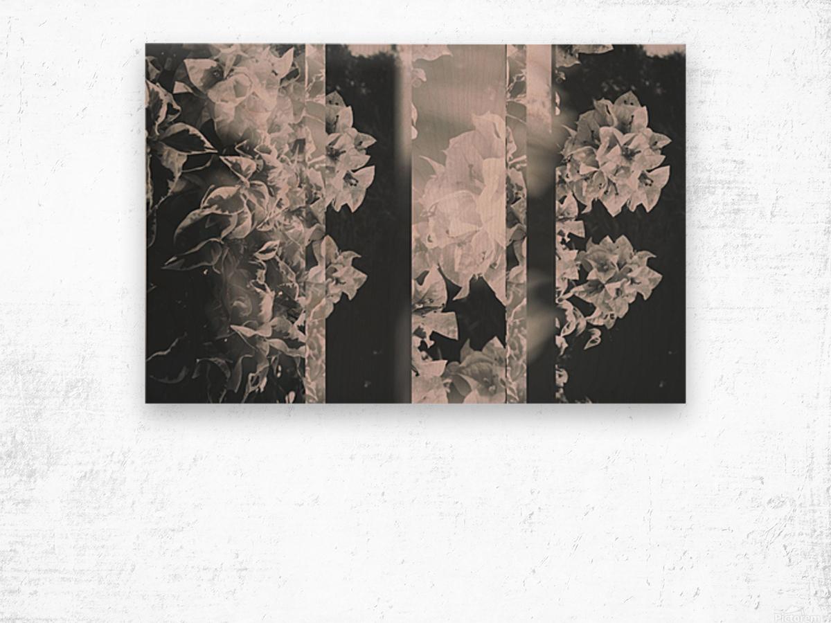 Bougainvillea Collage B&W Wood print